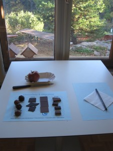 "Atelier ""Quel goût a mon chocolat favori ?"" par Odoratnews au Jardin botanique de Neuchâtel pendant la semaine Chocolatissimo"